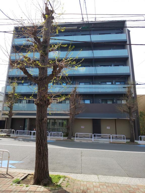 ラフィーヴィル清澄白河EAST、東京都江東区常盤1-3-7、清澄白河駅 徒歩5分